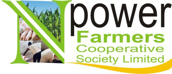 Npower Farmers